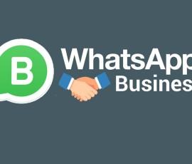 whatapp-business
